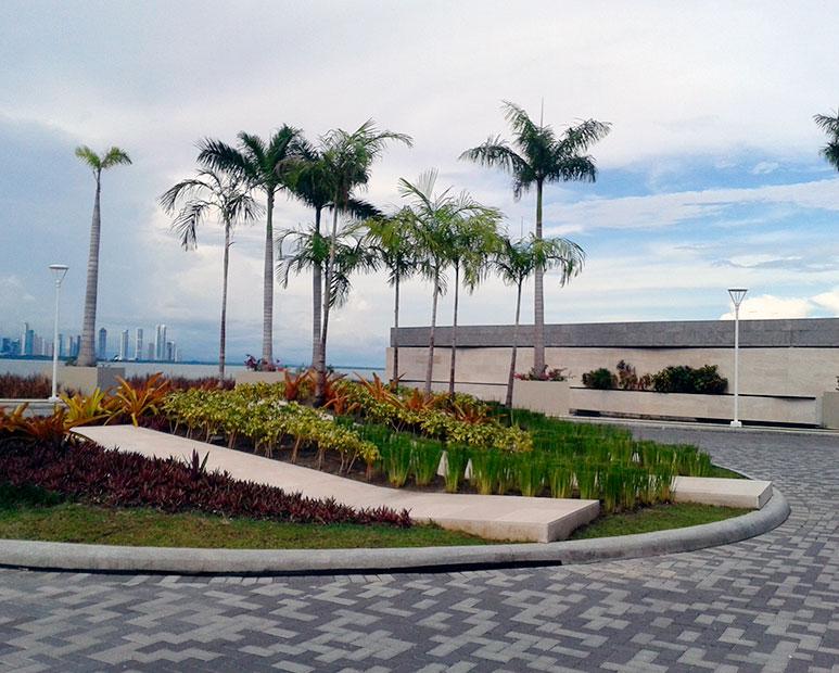 Green Roofs - Aplicación sobre estructura, cemento y concreto